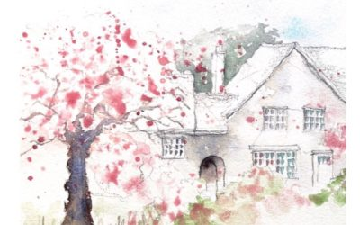 How to quick sketch cherry blossoms